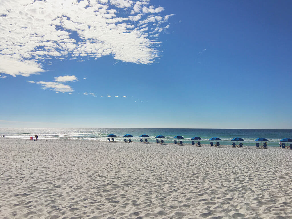White sand beach with row of umbrellas along the water in Pensacola, FL