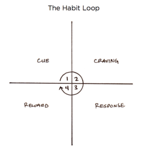 The Habits Loop